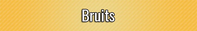Bruits
