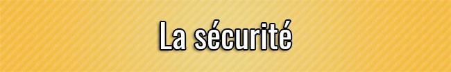 La seguridad