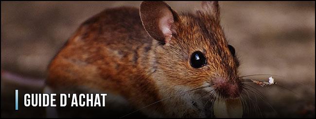 guía-de-compra-trampa-para-ratas