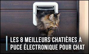 meilleure-chatiere-a-puce-electronique-pour-chat
