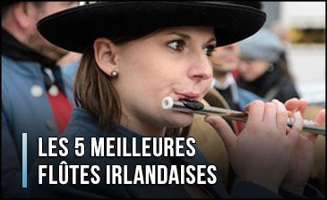 ¿Cuál es la mejor flauta irlandesa?