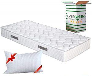 EvergreenWeb