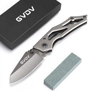 GVDV WG-ZDD002